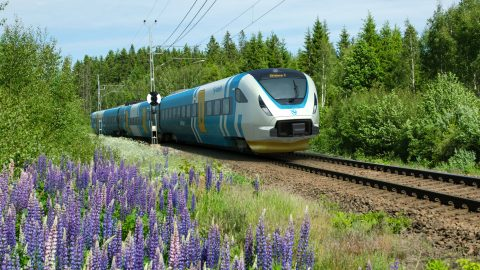High-speed train at railway with flowers besides the tracks