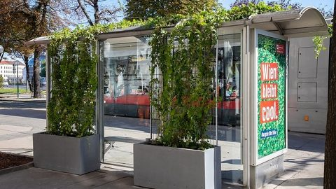 Green-roofed shelter in Vienna, source: Wiener Linien